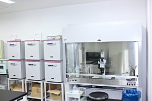 IVF研究室内
